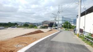 現地写真 東側道路面2